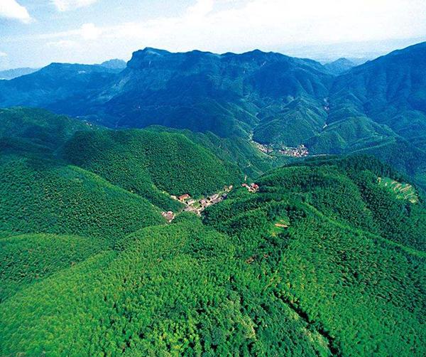 2018年中国国土绿化状况公报